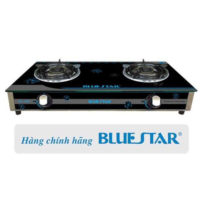 Bếp gas đôi Bluestar NG-5950H