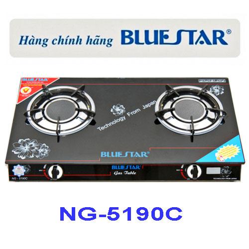 Bếp gas đôi hồng ngoại Bluestar NG-5190C